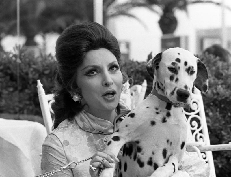 "Italian actress Gina Lollobrigida poses with a dalmatian dog during the Cannes Film Festival for the screening of German director Jerzy Skolimowski ""Roi, Dame, Valet"", 16 May 1972. Luigina Lollobrigida popularly known as Gina was born in 1927 in Subiaco, Italy. Gina Lollobrigida was tagged ""The Most Beautiful Woman in the World"" (""La donna più bella del mondo"") after starring in the 1955 movie and was embodied the prototype of Italian beauty. / AFP PHOTO / -"
