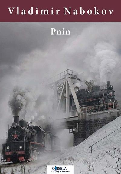 pnin_vv-2